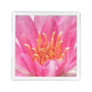 Pink Water Lily Close-Up Perfume Tray
