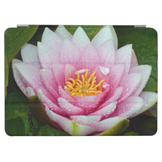 Pink water lily floral print iPad air cover