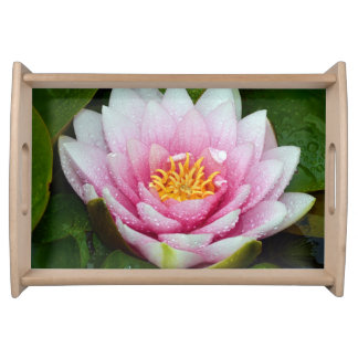 Pink water lily flower serving tray