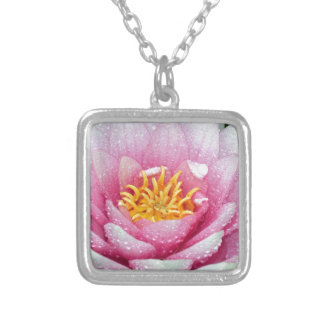 PInk water lily flower Silver Plated Necklace