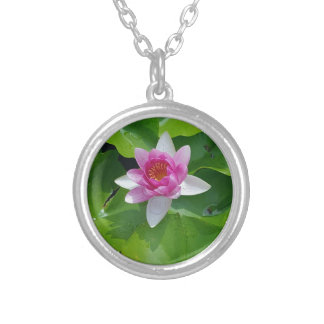 Pink Water Lily On Green Pads Photography Silver Plated Necklace