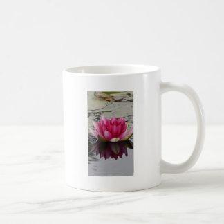 Pink Water Lily Photograph Mug