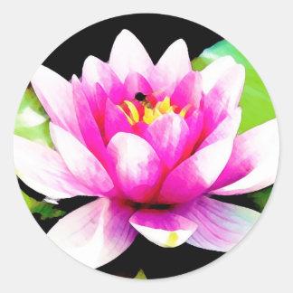 Pink water lily round sticker
