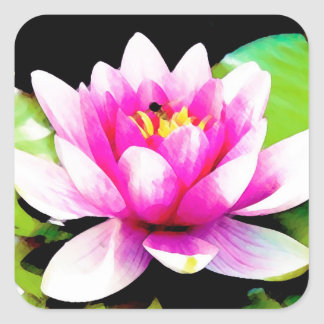 Pink water lily square stickers