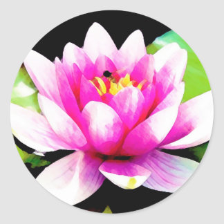 Pink water lily round stickers