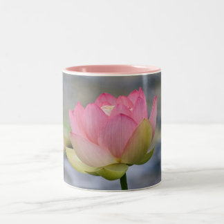Pink Water Lily Two-Tone Coffee Mug