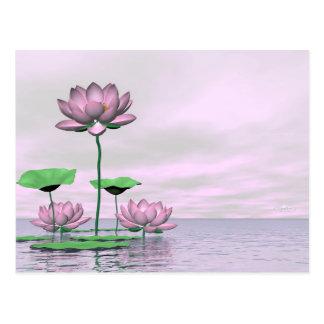Pink waterlilies and lotus flowers - 3D render Postcard