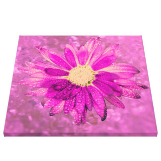 pink wet flower gallery wrapped canvas
