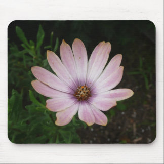 Pink Wildflower Mouse Pad