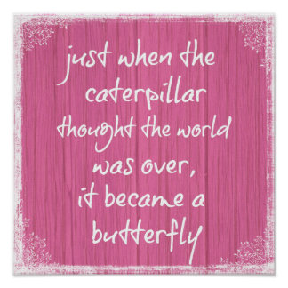 Pink Wood with Inspiring Butterfly Quote Poster
