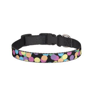 Pink Yellow Orange Green Blue & Purple Polka-Dots Pet Collar