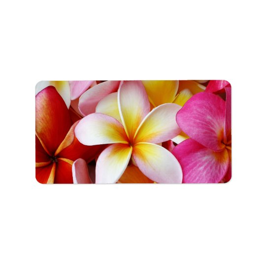 Pink Yellow  White Mixed Plumeria Flower Label