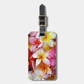 Pink Yellow  White Mixed Plumeria Flower Luggage Tag