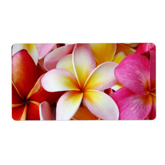 Pink Yellow  White Mixed Plumeria Flower Shipping Label