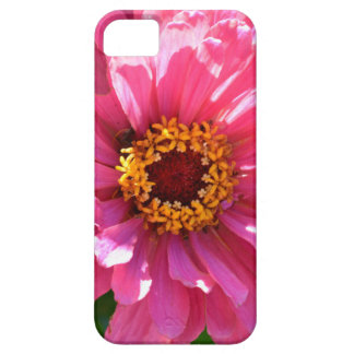 Pink Zinnia Barely There iPhone 5 Case