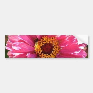 Pink Zinnia Bumper Sticker