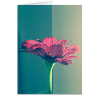 Pink Zinnia by Cynthia Turner Designs Card