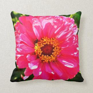 Pink Zinnia Cushion