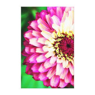 Pink Zinnia Flower Canvas Canvas Print