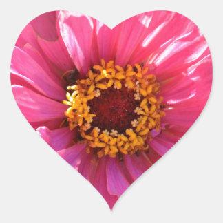 Pink Zinnia Heart Sticker