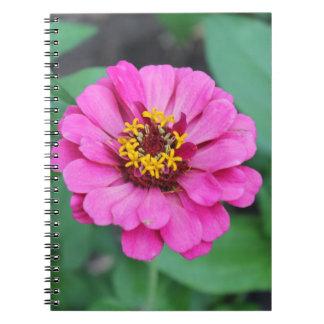 Pink Zinnia Notebook