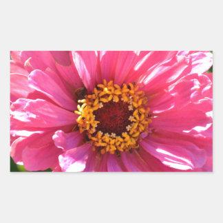 Pink Zinnia Rectangular Sticker