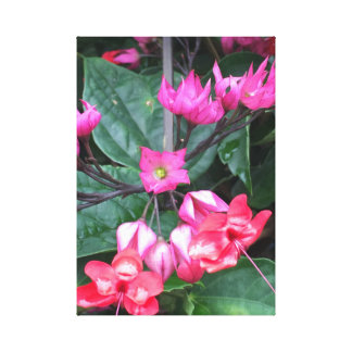 "PinkF12"" x 12"", 1.5"", Single Canvas"