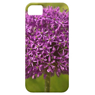 Pinkfarbener ALIUM Case For The iPhone 5