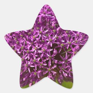 Pinkfarbener ALIUM Star Sticker