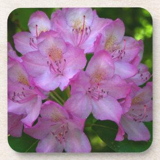 Pinkish purple Rhododendron Catawbiense Drink Coasters