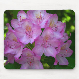 Pinkish purple Rhododendron Catawbiense Mouse Pad