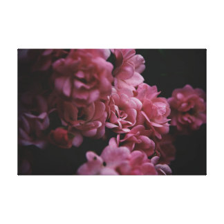 Pinks darker canvas print