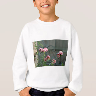 Pinks growing in a Cotswold Garden Sweatshirt