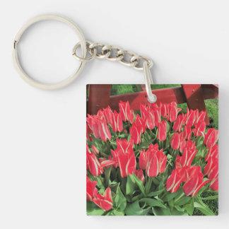 Pinocchio Tulips Key Ring