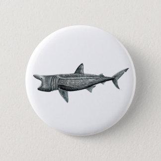 Pins, broaches, plates round Shark pilgrim 6 Cm Round Badge
