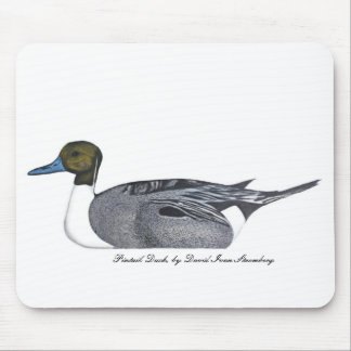 Pintail Duck by David Ivan Stromberg Mouse Pad