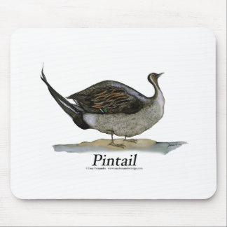 Pintail duck, tony fernandes mousemats
