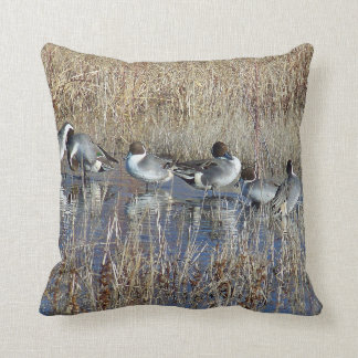 Pintail Ducks Birds Pillow