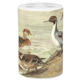 Pintail Ducks Birds Wildlife Animals Pond Bath Set