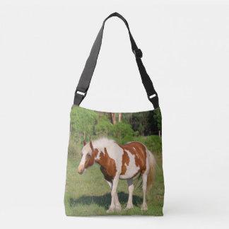 Pinto Mare Crossbody Bag