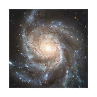 Pinwheel galaxy gallery wrapped canvas