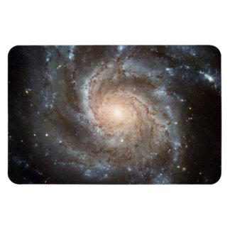 Pinwheel galaxy rectangular photo magnet