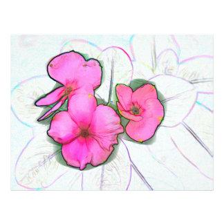 pinwheel pink flowers sketch floral plant design flyer design