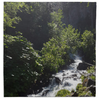 Pioneer Falls Butte Alaska Napkin