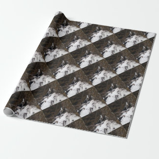 Pioneer Falls Butte Alaska Wrapping Paper