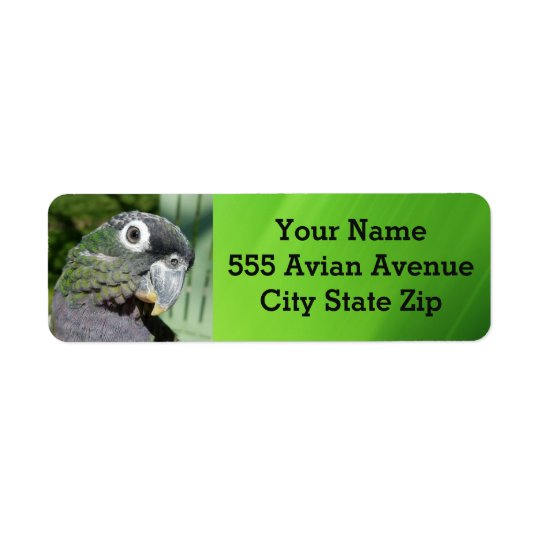 Pionus Parrot Address Labels