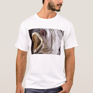 Piranha fish as trophy on wood isolated T-Shirt