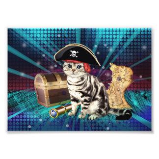 pirate cat art photo