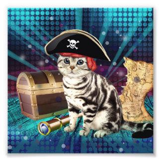 pirate cat photo