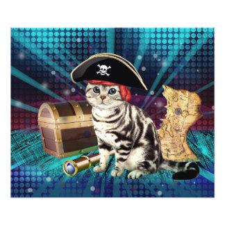 pirate cat photo art